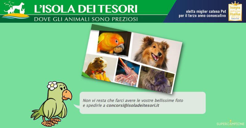 Isola dei Tesori: concorso Calendario 2017