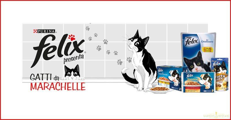 Vinci gratis una fornitura di prodotti Purina Felix per gatti