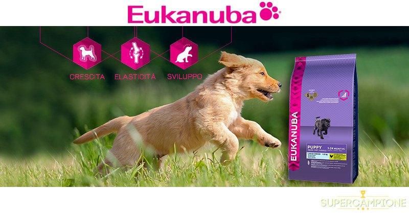 Campioni omaggio Eukanuba
