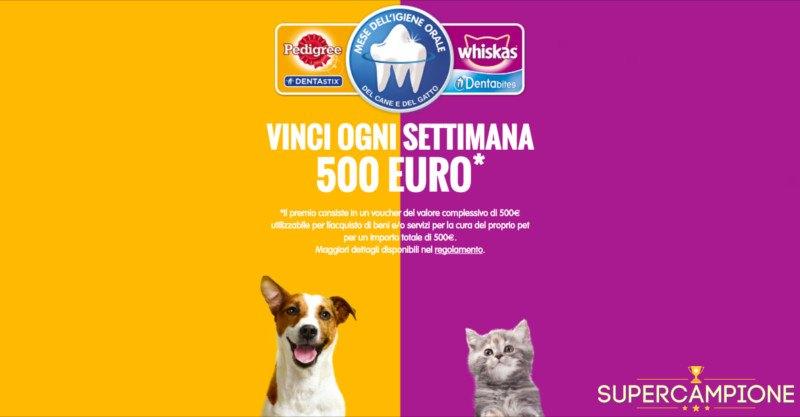 Vinci buoni spesa da 500€ con Pedigree e Whiskas