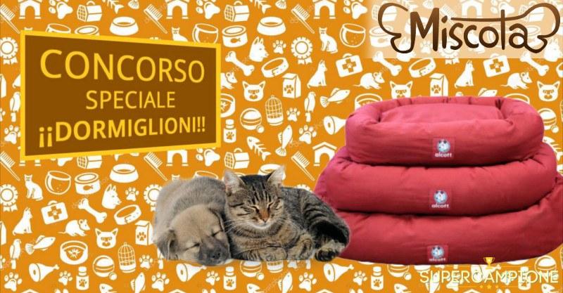 Vinci gratis un lettino per cani o gatti