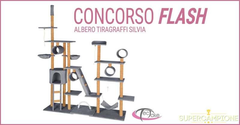 Supercampione - Vinci un albero tiragraffi Silvia