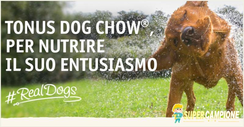 Vinci gratis Tonus Dog Chow