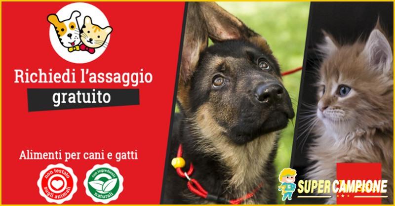 Supercampione - Campioni omaggio cibo per cani e gatti Husse