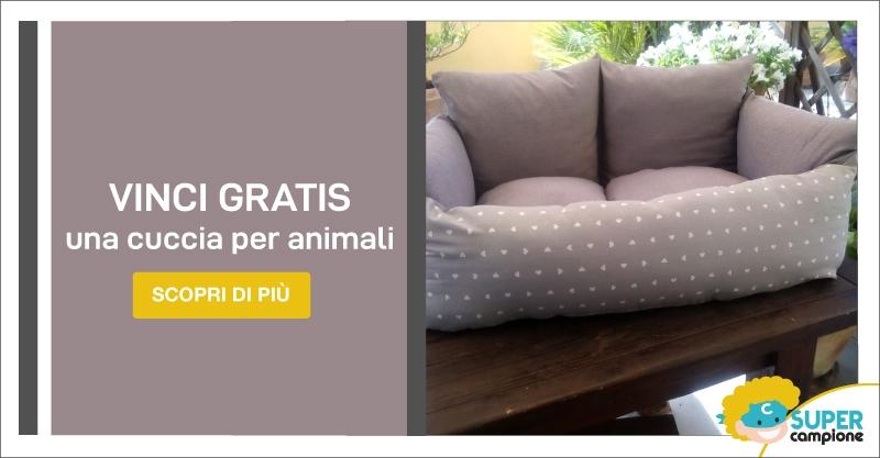 Vinci gratis divanetto per cane o gatto