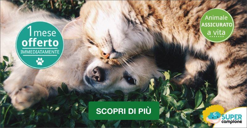 Assicurazione Cane e Gatto: ricevi un mese gratis