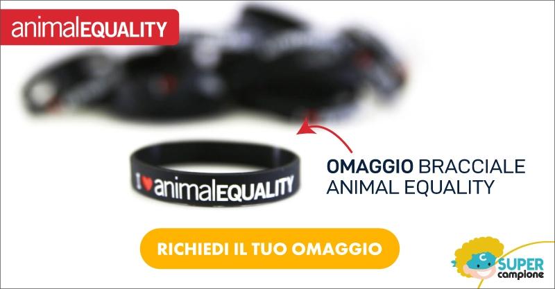 Ricevi in omaggio il bracciale Animal Equality