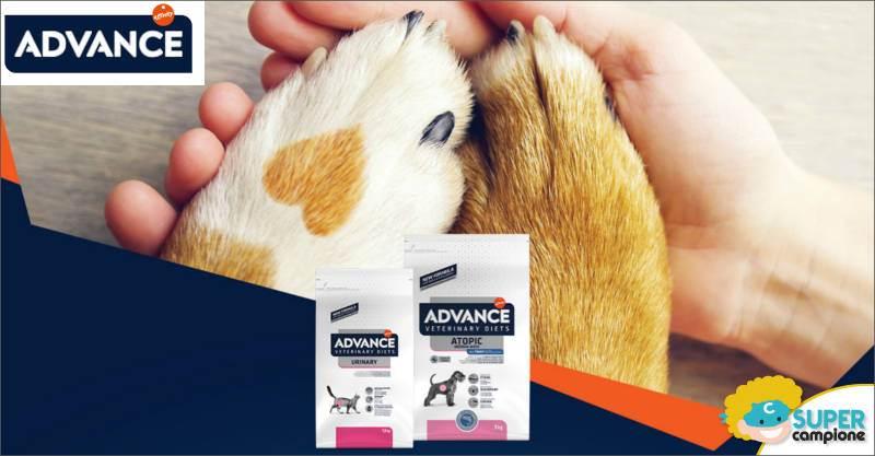 Advcance: vinci polizza assicurativa e ricevi gratis consulenza veterinaria